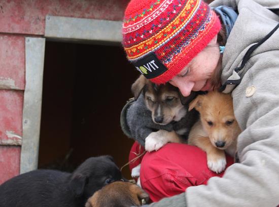 """Elisabeth sammen med nye """"Flying Huskies"""" hjemme i kennelen. Foto: Anne Karang"""